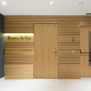 Oak Flush Fire Doors